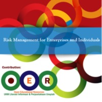 Risk Management for Enterprises and Individuals