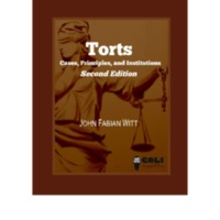 Torts: Cases and Contexts Volume 2