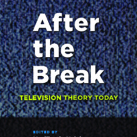 After the Break : Television Theory Today