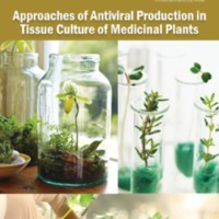 Approaches of Antiviral Production in Tissue Culture of Medicinal Plants