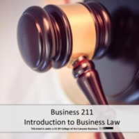 Business 211<br />