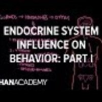 Endocrine System and Influence on Behavior - Part 1